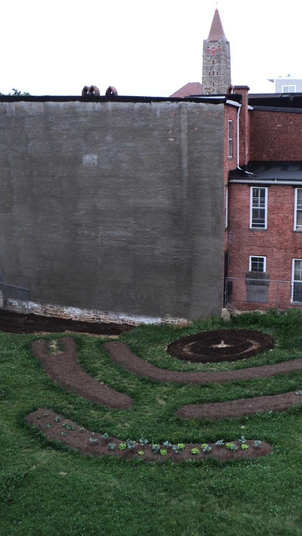 Garden Above 8